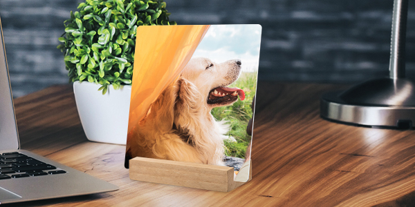 Personalized gift for him, metal desk art SC1