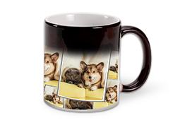 Shop-These-Products-Magic-Mug